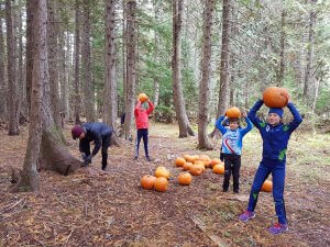 Kids' Pumpkin Hunt